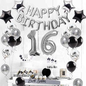 16th birthday party decorations 16th Birthday Decorations Supplies Silver