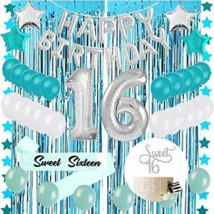 16th birthday party decorations Sweet 16 Sixteenth 16th Birthday