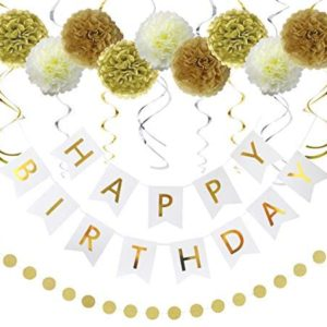 15th birthday party decorations Litaus Birthday Decorations Gold and