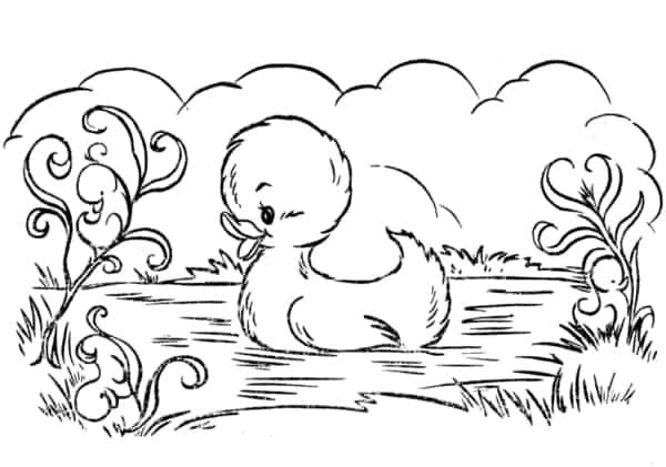 duckling cartoon in the pond