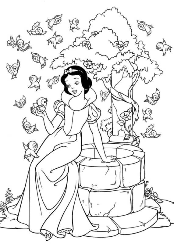 drawing to paint Snow White with birds