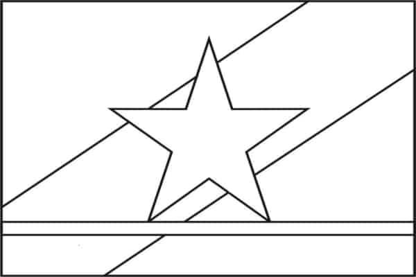 flag of Roraima to paint