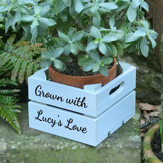 Wooden crates for decoration