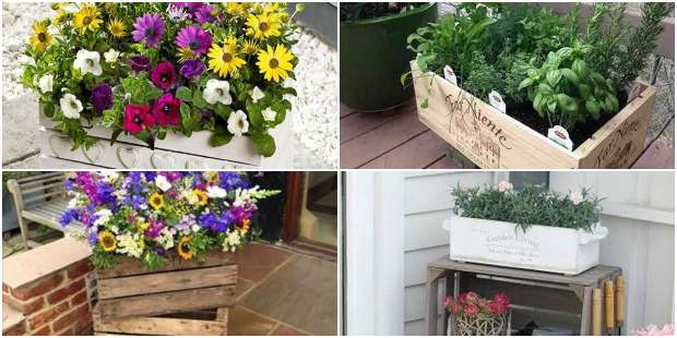 Garden decoration with crates