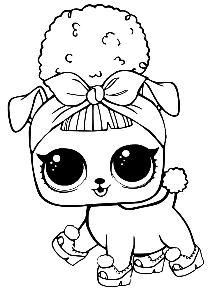 Pet Drawing LOL