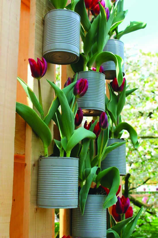 garden with cans