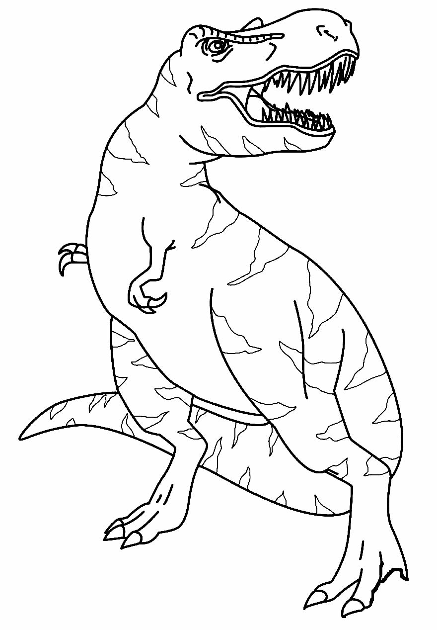 T-Rex Dinosaur Drawing to paint
