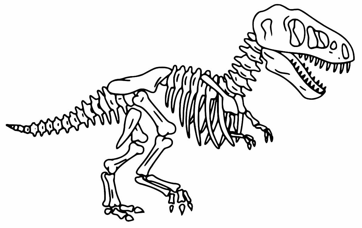 T-Rex Drawing - Bones