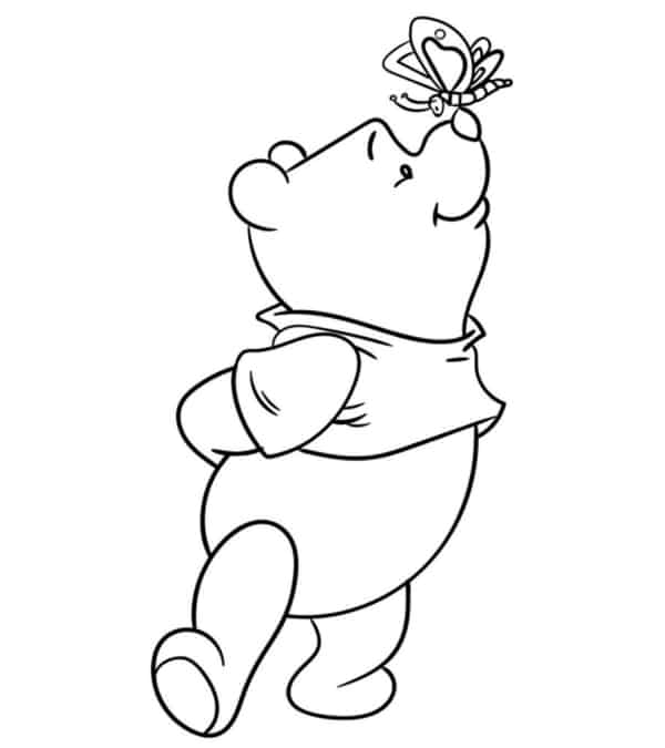 teddy pooh with butterfly