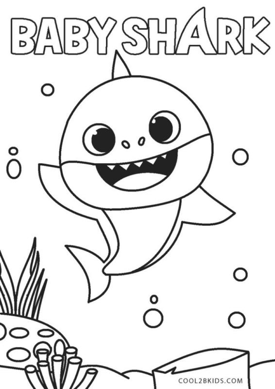 baby shark free drawing