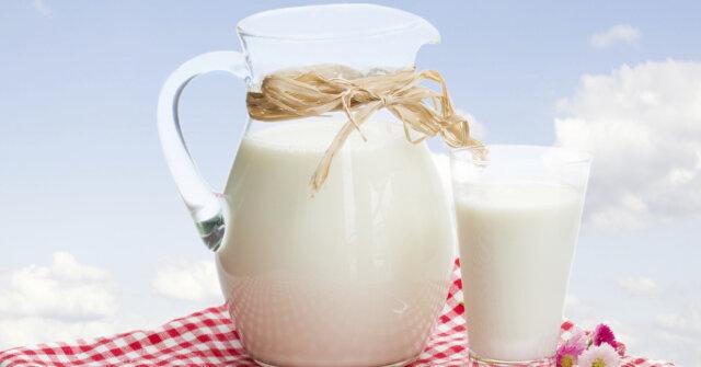 how to make birdseed milk