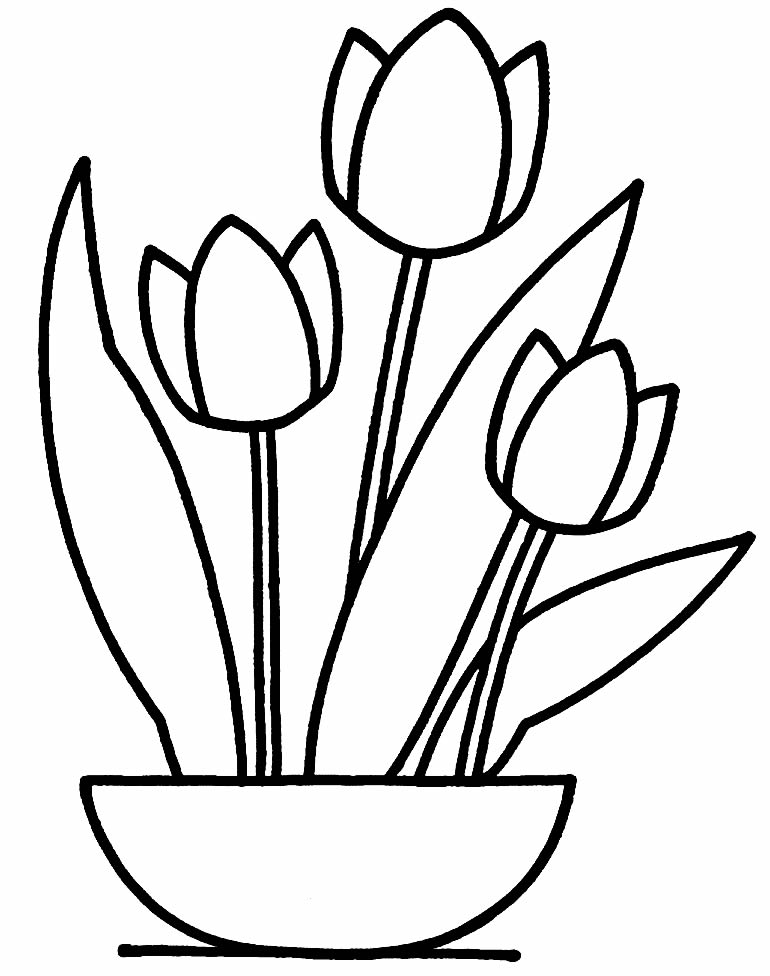 Image of tulips to paint