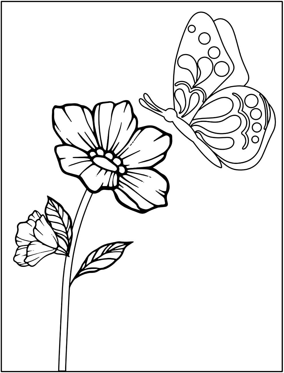 Image of Flowers to color